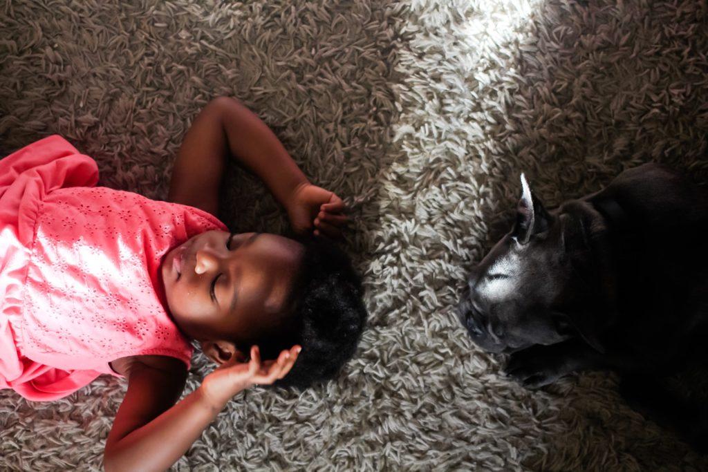 L'animale anziano e il bambino interiore.